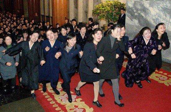 朝媒:金正日逝世 熊群出洞哀嚎