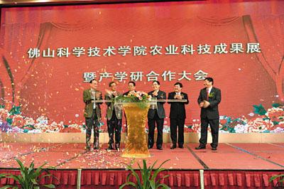佛山市禅城区经济和科技推进局参取2017中国新兴