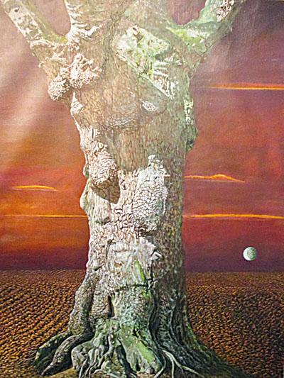 ■《老樹》。趙僖  攝