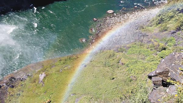 ■在草地上的彩虹。 作者提供