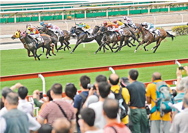 ■兩個馬場共吸引35,434人次進場觀賞賽事。 梁祖彝  攝