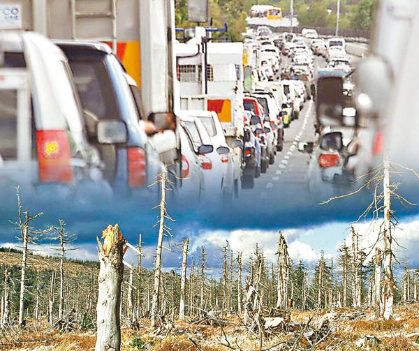 ■氮的化合物可造成污染,破壞生態。如上圖汽車釋放二氧化氮,下圖氨造成酸雨。 網上圖片