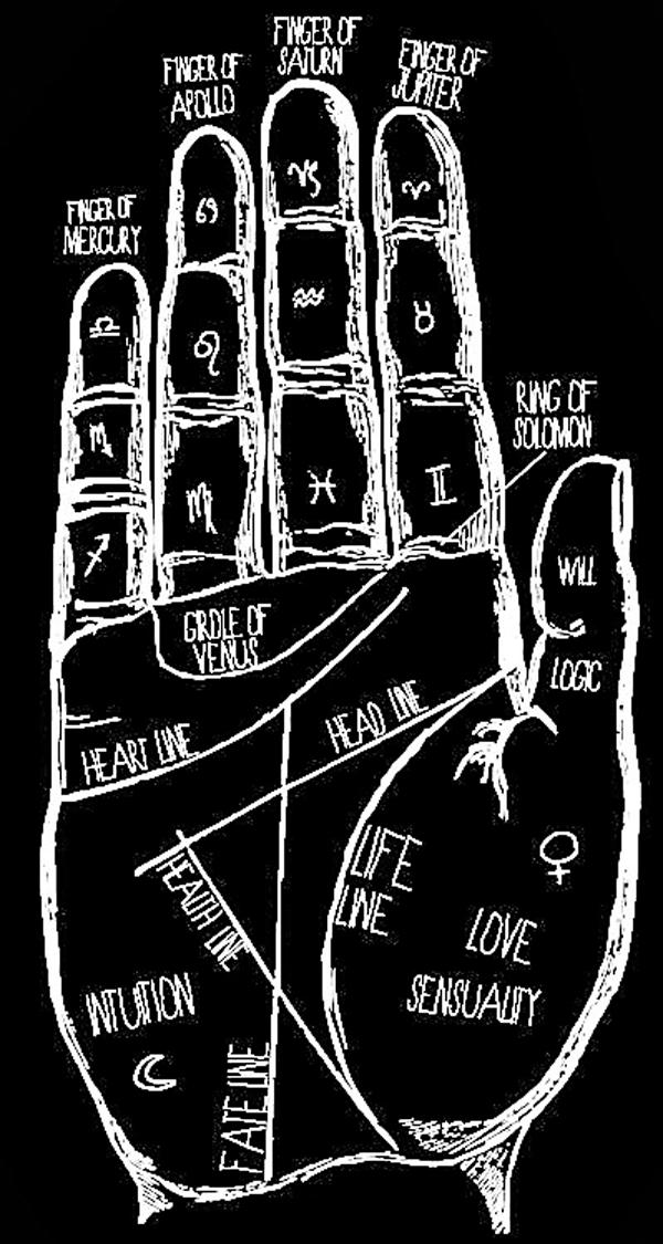 ■手掌上的不同線條顯示人生不同方面。 網上圖片
