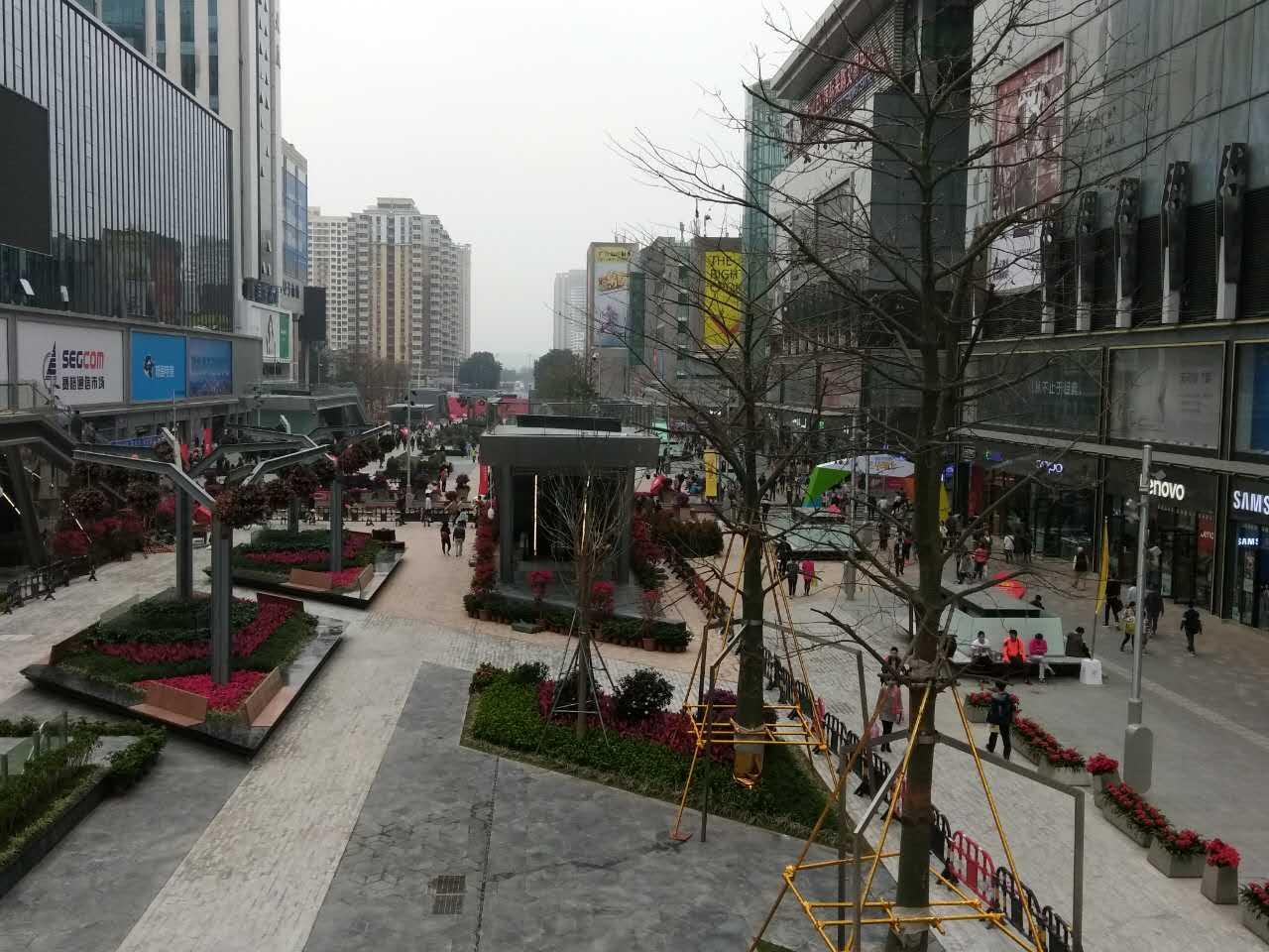 1月11日下午,華強北街景。