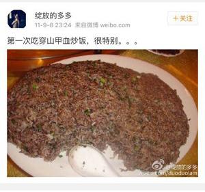 「綻放的多多」在微博稱其食用「穿山甲血炒飯」(網絡圖片)