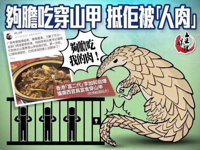 拒食穿山甲海報。香港大公文匯傳媒集團全媒體新聞中心製圖