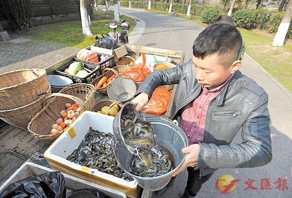 ■在武漢動物園有上千隻動物,每日至少吃掉一噸食物。圖為工作人員在處理食材。 網上圖片