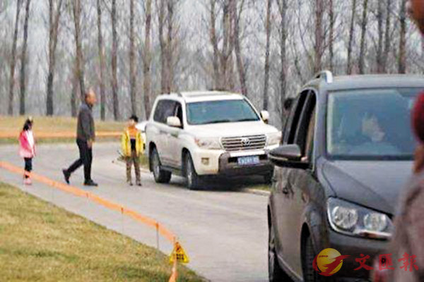 ■北京野生動物園工作人員稱,網傳自駕遊下車圖片確是該園白虎園區。 網上圖片