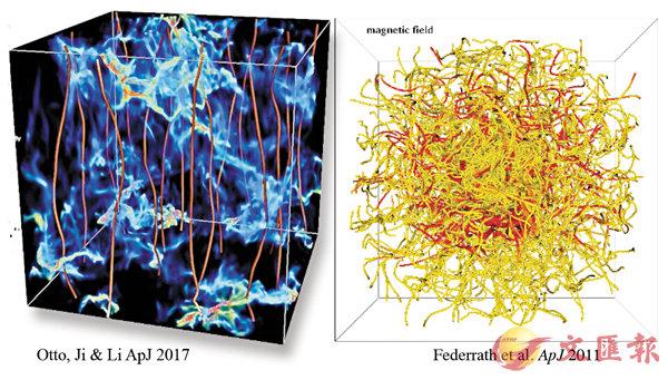 �左圖為李華白團隊的數值模擬,藍色部分顯示低密度星雲氣體,紅線代表磁場方向,強烈且有規律。右圖則為主流理論,磁場線與星雲中的湍流糾纏不清。 受訪者供圖