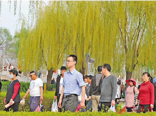 ■安新縣的旅遊季節今年來得特別早。 記者顧大鵬 攝