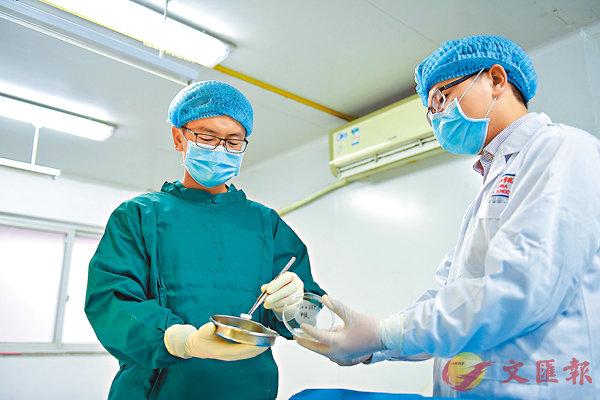 ■四川藍光英諾公司實驗人員正在檢驗3D打印血管。 本報四川傳真