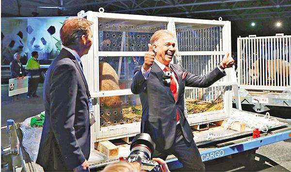 ■歐維漢茲動物園園主馬塞爾·布霍恩(右)慶祝大熊貓抵達荷蘭。  新華社