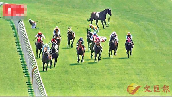 ■「飛鶯」倒地跌斷左前腳(後),騎師羅理雅(左後)肩膊受傷。 電視截圖