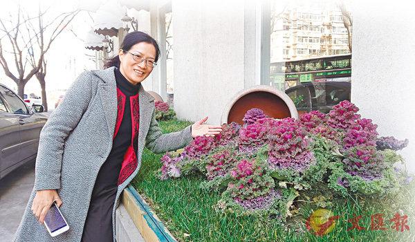■盆栽蔬菜已成為廣州街巷中一道獨特的風景線,這讓林春華感到頗為自豪。 受訪者供圖