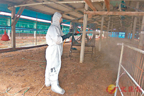 ■工作人員在台南爆發禽流感的養雞場進行消毒。 中央社