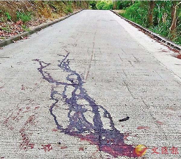 ■麥理浩徑出事落斜路段遺下大灘血跡。 網上圖片