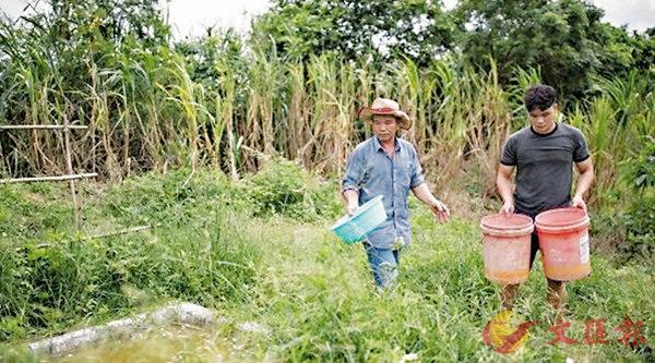 ■粵農梁一元(左)十年護鳥,也感染了家人加入護鳥隊伍。 網上圖片