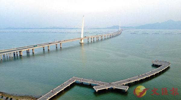 ■目前,粵港澳大灣區生機勃勃,是亞太地區經濟最具活力、最具發展潛力的地區之一。圖為深圳灣跨海大橋。資料圖片