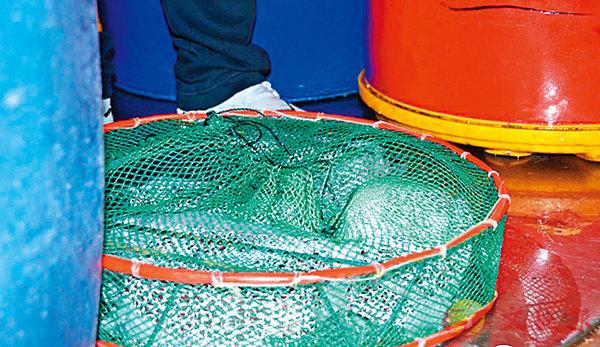 漁船走私外幣值8億  粵拘一港人 (圖)