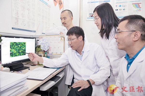 ■中科院「百人計劃」吸引哈佛博士后歸國創業,圖為他們在實驗室討論研究進展。 新華社