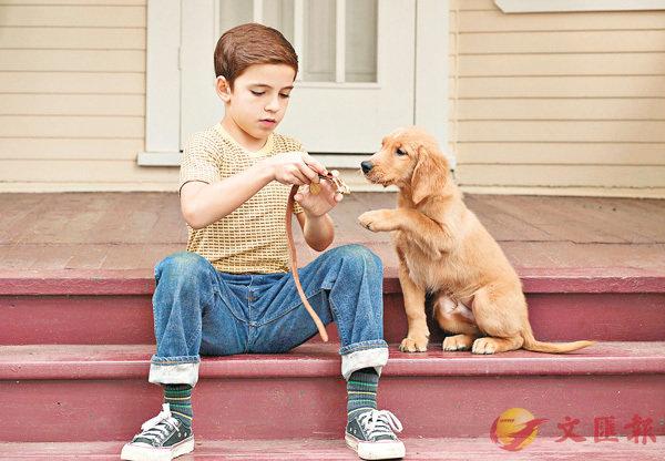 ■電影把人類與狗的感情刻畫得相當細緻,好感人。