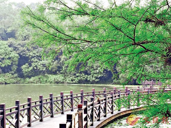 ■番禺大夫山森林公園裡面的一座木橋。作者提供