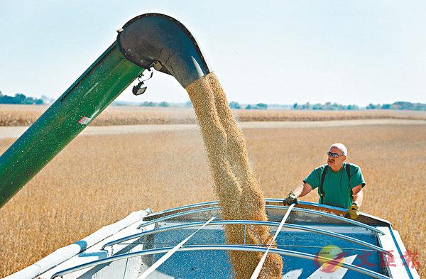 ■圖為美國大豆農場生產情況。資料圖片
