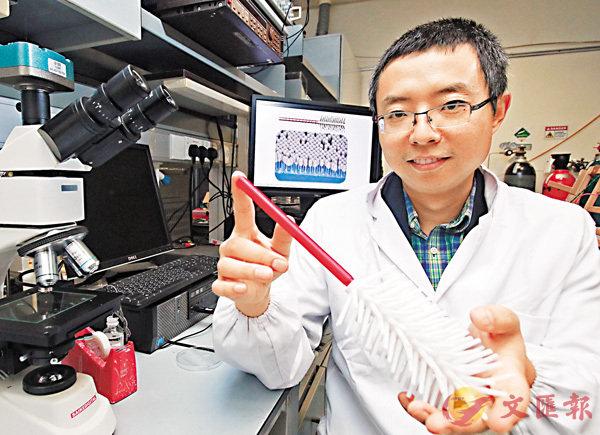 �唐晉堯研發出大小僅為頭髮直徑五十分之一的光控納米樹狀機械人。 香港文匯報記者彭子文  攝