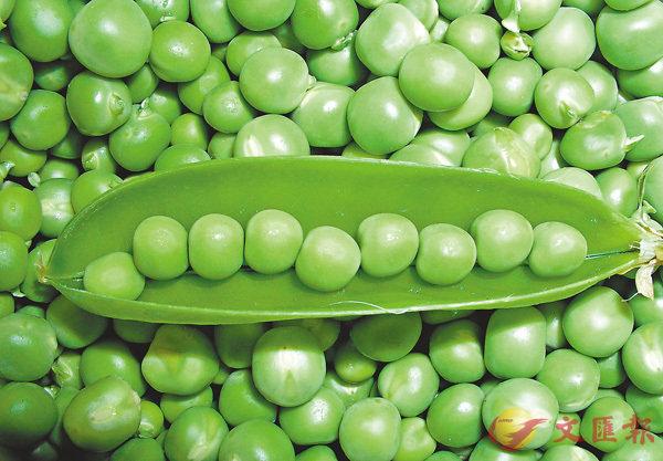 ■「截然不同」是chalk and chesse,「十分相似」則是peas in a pod。 網上圖片