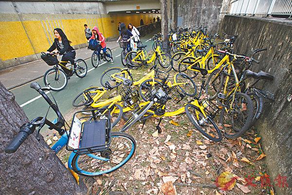 ■共享單車經常推出活動吸客。香港文匯報記者曾慶威  攝