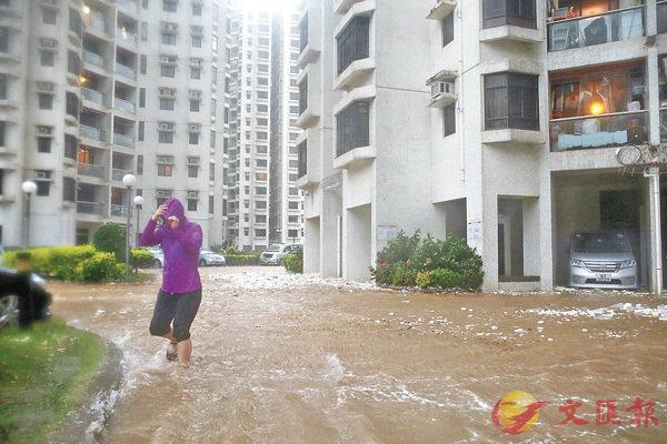 ■「天鴿」吹襲下,香港杏花�h水浸。 資料圖片