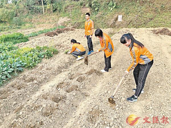 ■學生手持鋤頭翻泥土,體會農民耕作生活。 校方供圖