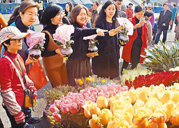 ■春節來臨之際,廣州市民在迎春花市精心選花買花,臉上洋溢笑容。 新華社