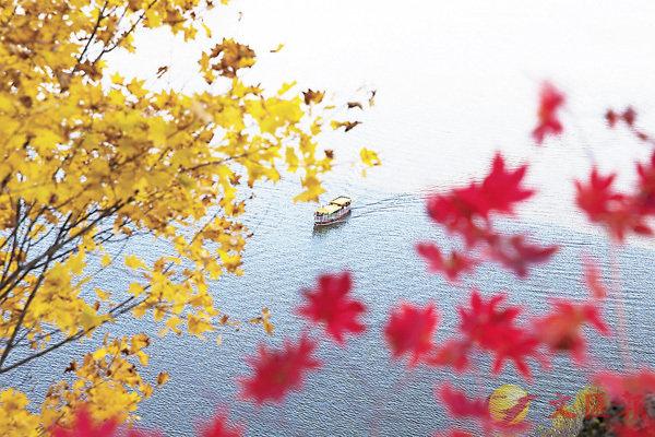 ■在中國文化中,秋天經常帶給人蒼涼悲傷的感覺。 資料圖片