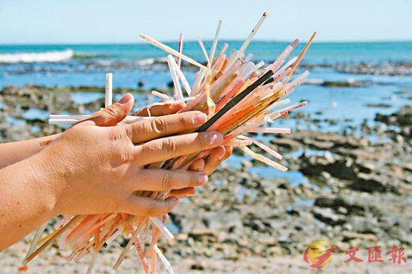 ■英國每年消耗850萬支塑膠飲管,不少遭棄置到海洋。 作者供圖