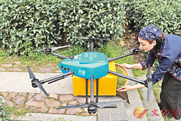■ 採茶工把新鮮採下的茶青放置到無人機上,2分鐘即可送至山下炒製。香港文匯報記者王莉  攝