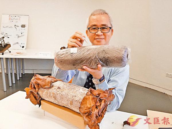 ■陳玉成示範如何將手上的「菌絲子彈」插入菌包。香港文匯報記者姜嘉軒  攝