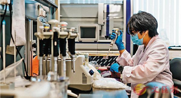 ■本港科研水平近年進步卓越,屢獲國家及國際級頂尖榮譽。圖為香港科研人員在實驗室工作。 資料圖片