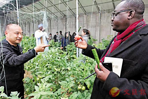 中國擬擴大美農品進口 農企未雨綢繆