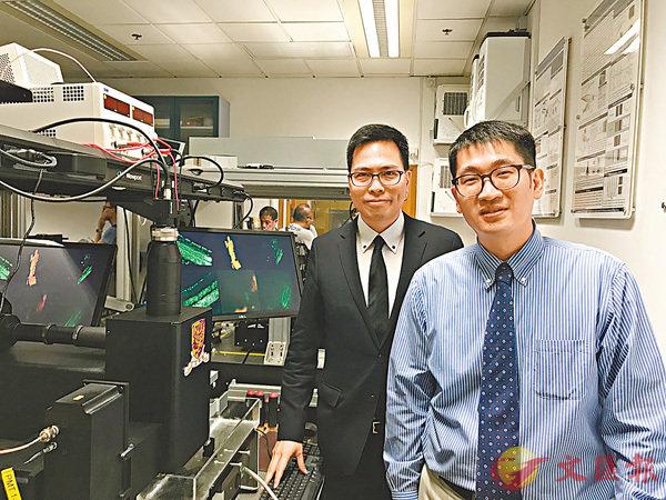 ■梁啟信(左)與陳世祈教授(右)合作,利用DH-TPE顯微鏡掃描活體動物的視覺神經細胞,以探索視覺神經退化的原因。 香港文匯報記者唐嘉瑤 攝