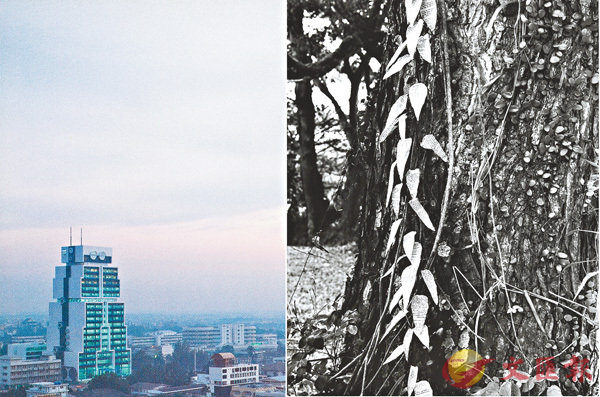 ■(左) 大華銀行曼谷總部,1986年。油墨印刷紙本。(右)Simryn Gill,《森林#16》,1996至1998年,銀鹽照片,M+。
