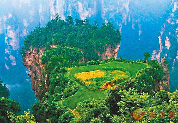■「空中田園」位於湖南張家界市天子山老屋場組。 香港文匯報湖南傳真