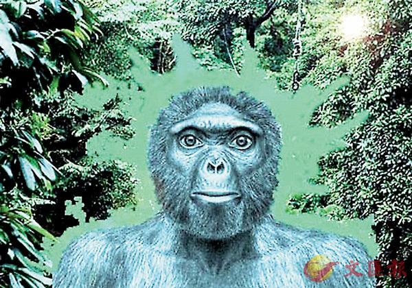 ■說牠是人類的祖先,你相信嗎?(網上截圖)  作者提供