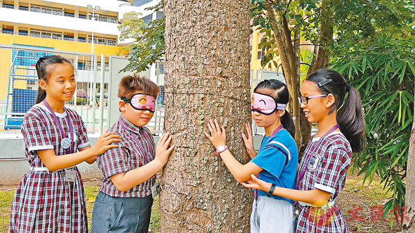 ■同學蒙上雙眼,感受每棵樹的不同之處。作者供圖