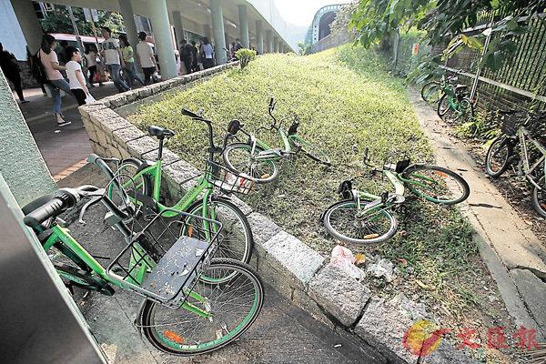 ■即將下周三結業的Gobee. bike,大量共享單車被隨意棄置。香港文匯報記者曾慶威  攝