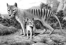 絕種動物再生掀爭議