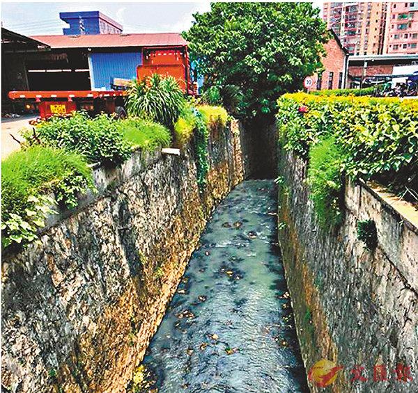 ■廣州白雲區河涌有問題無上報。   網上圖片