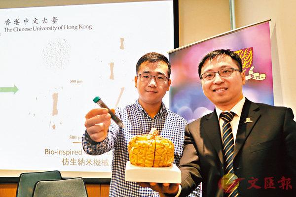 ■張立(右)和博士研究生俞江帆(左)展示人腦模型和磁性納米粒子。 中大供圖
