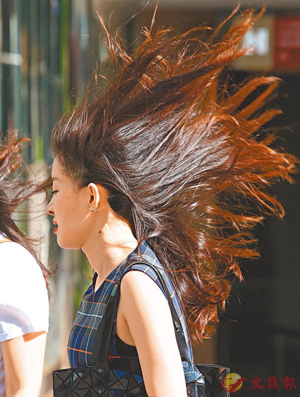 ■打風下的最新髮型。香港文匯報記者劉國權  攝