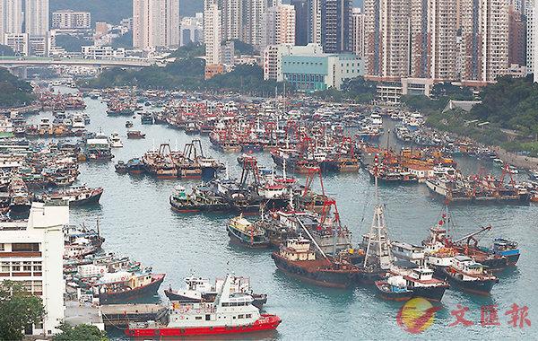 ■香港仔避風塘陸續有避風漁船駛至停泊,但距離滿泊還很遠。 香港文匯報記者潘達文  攝